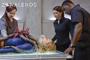 Ver Supergirl temporada 1 episodio 13